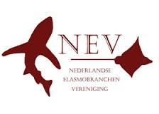 Logo NEV